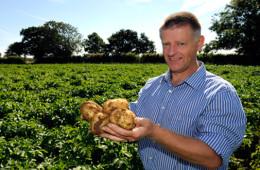 Buxton Potato Company
